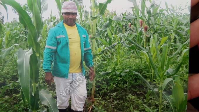 O agricultor Egino Chagas de 60 anos, foi morto com um tiro de espingarda nas costas