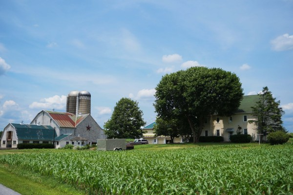 our-farm2-copy