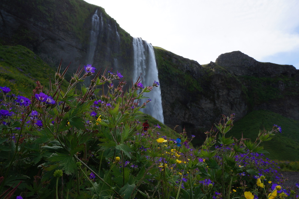 iceland_small_3303