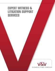 Litigation Support | Expert Witness