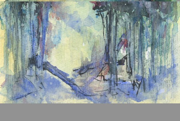 Fallen Trees - Limited Edition signed and number giclee prints
