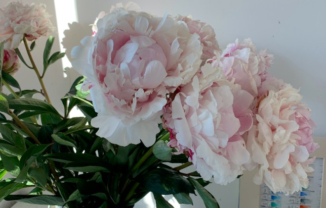 Painting Flowers for Inspiration - Peony bouquet