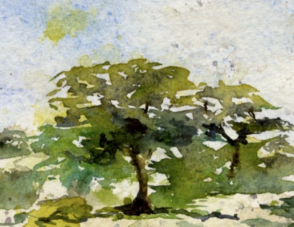 Watercolour on khadi paper. Cooled Down from Summer's Heat by Vandy Massey. Watercolour on Khadi Paper. 21 x 15cm. Detail 2