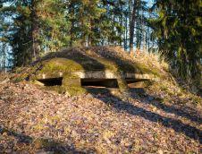 vanerpaddel-viklund-f-14