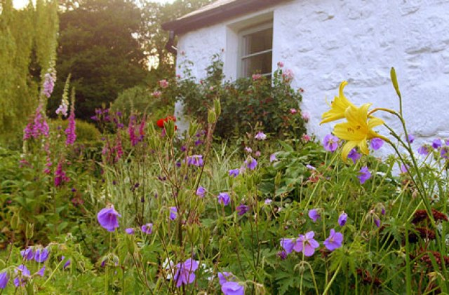 offas-lodge-window-flowers