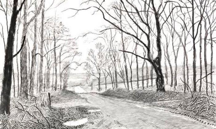 Detail-from-David-Hockney-009 woldgate