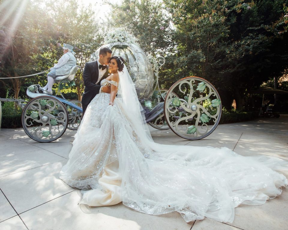 Disney Weddings Vanessa Hicks Photography