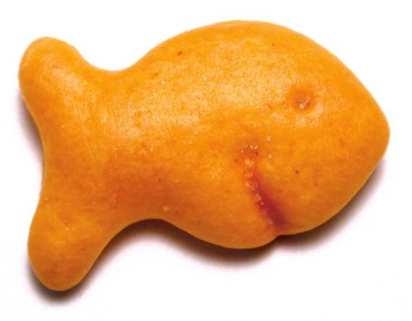 cracker pesciolino