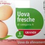 confezione-uova