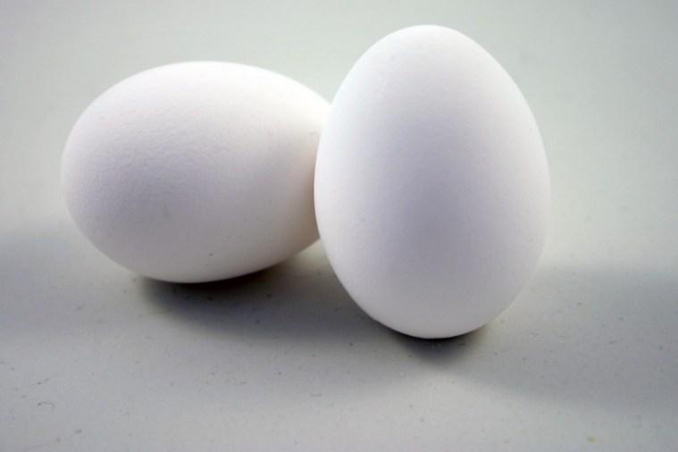 uova proteine sport