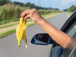 Arm dropping banana skin from car window