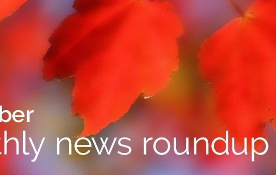 Vanguard Monthly News Roundup
