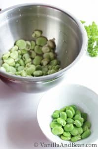 Peppered Capellini with Fava Beans Peas and Pecorino   VanillaAndBean.com