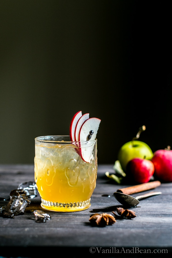 A refreshing seasonal mixer, with a smooth punch. Bourbon Apple Cider Shrub Cocktails from Vanilla And Bean.