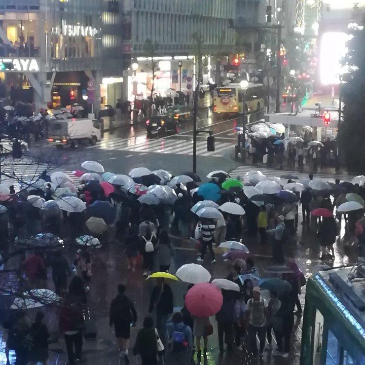 travel rain Shibuya Tokyo Japan