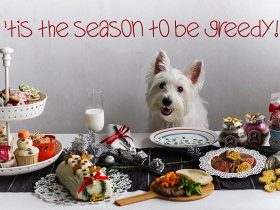 Vanillapup Dog Christmas Table Spread Special | Vanillapup