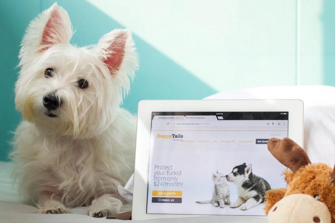 Happy Tails Pet Insurance | Vanillapup