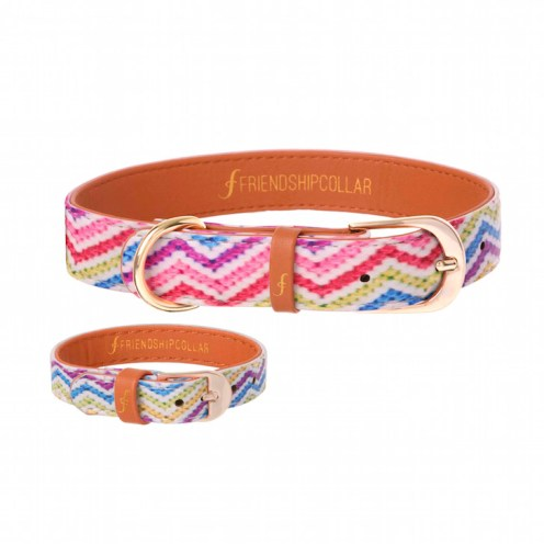 Friendship Collar The Top Dog