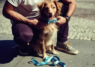 Zee.Dog Banana Leash and Bow Tie