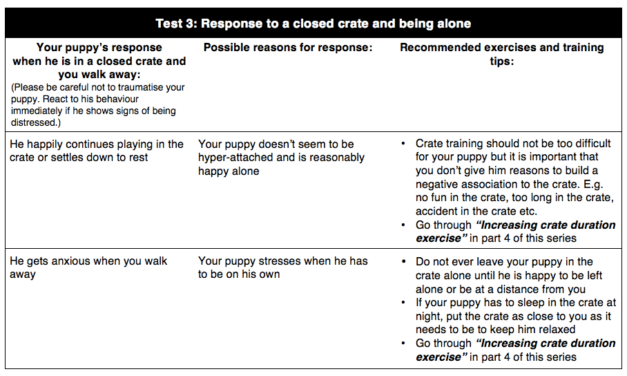 Crate Training Preparation Test 3 | Vanillapup
