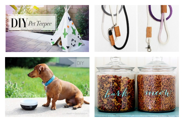 DIY Dog Projects | Vanillapup