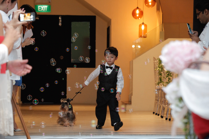Hotel Fort Canning Page Boy and Doggy Escort | Vanillapup