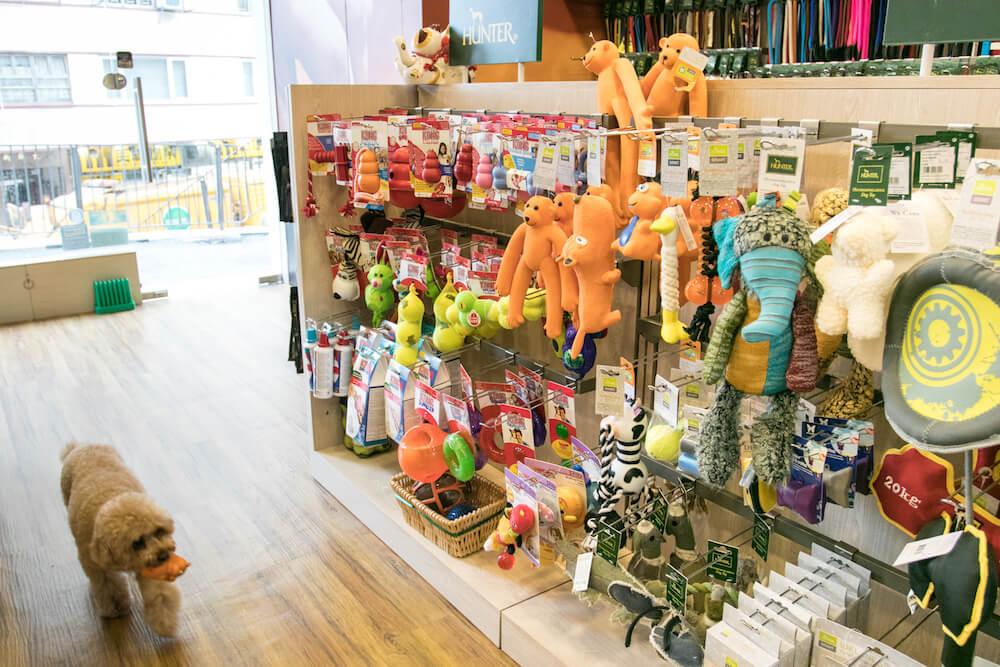 Hunter Hong Kong Store | Vanillapup