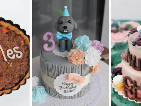 Singapore Dog Bakeries | Vanillapup