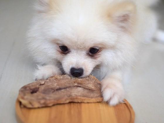 Dear Deer Freeze-dried Dog Treats Review | Vanillapup