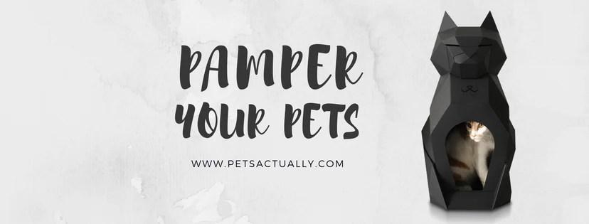 Pets Actually | Vanillapup
