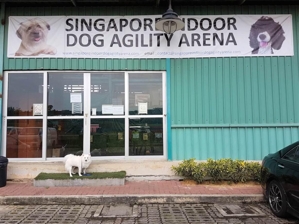 Singapore Indoor Dog Agility Arena Exterior | Vanillapup