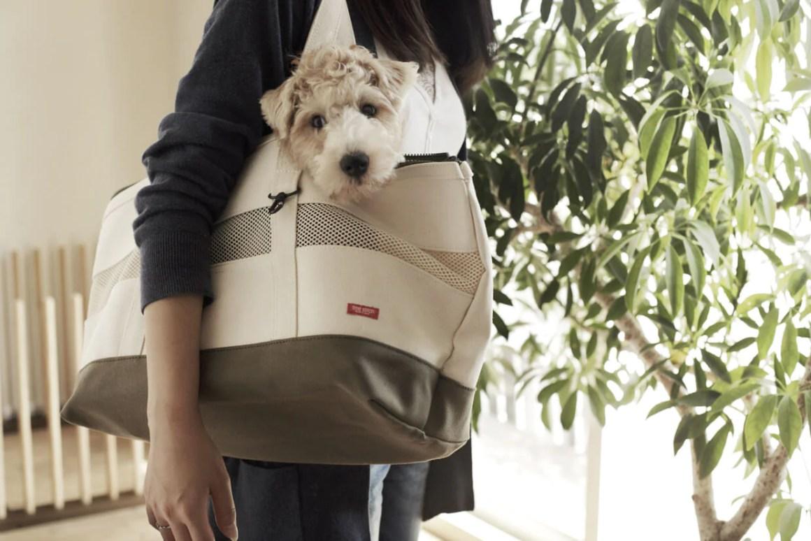 Tokyo Pet Stores - Free Stitch | Vanillapup