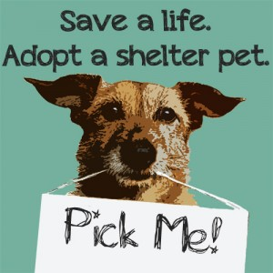 save_a_life_adopt_a_shelter_pet-300x300