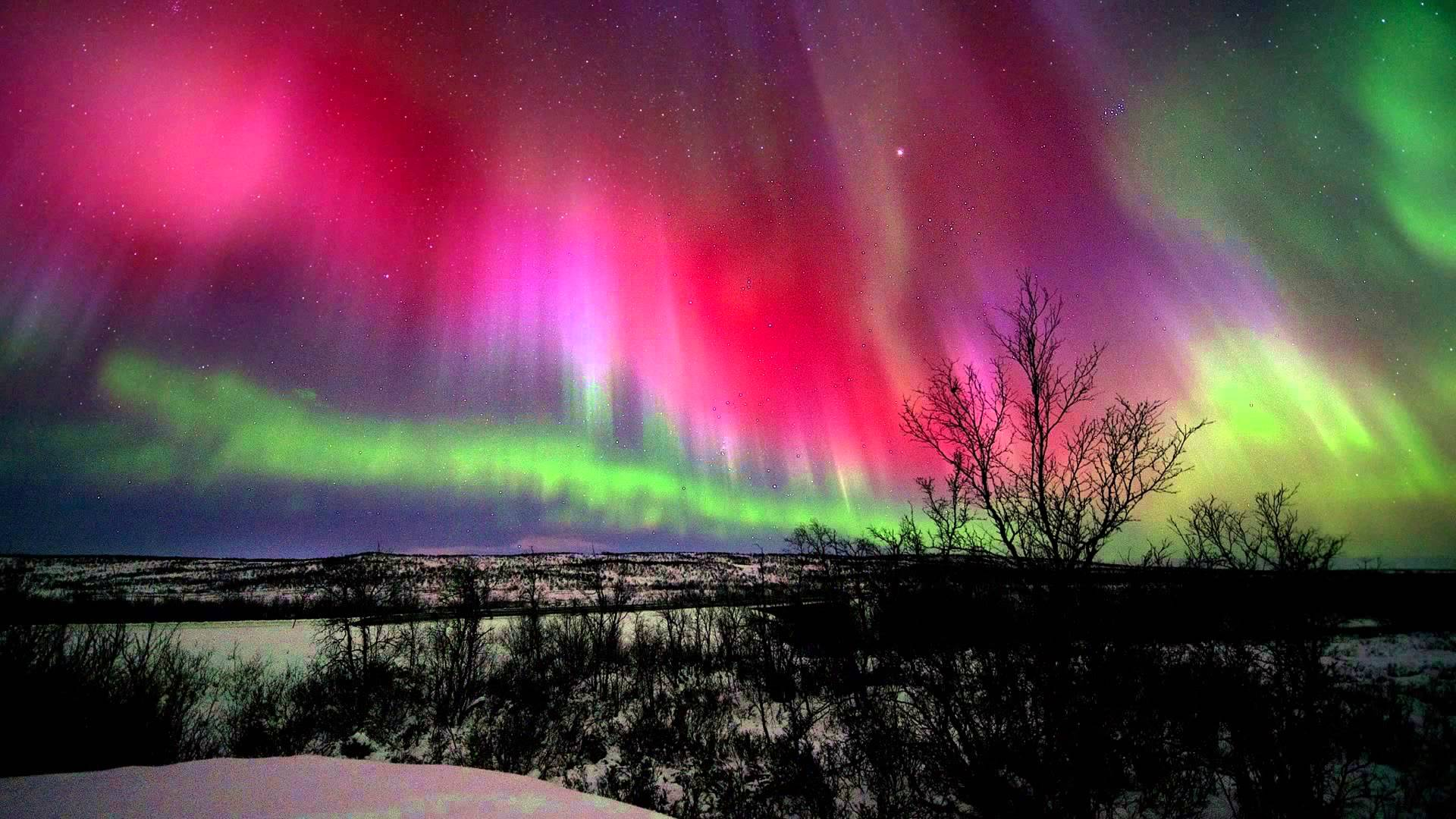 Everything You Need To Know About The Northern Lights