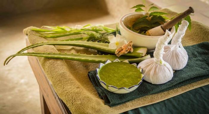 healing through Ayurveda Paradise Maho