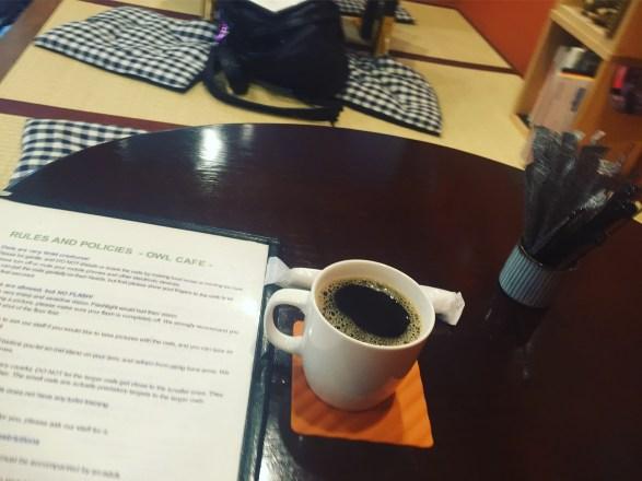 owl cafe tokyo, japan harajuku coffee and rules