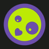 katydid2014