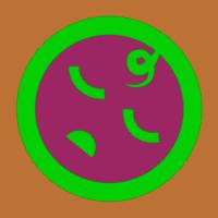 ravineshsingh