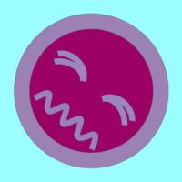 Brynjamen (GB1)