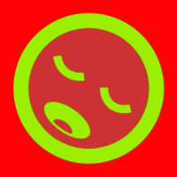 maslak (INT4)
