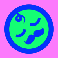 gdubya2