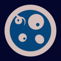 rpfeller