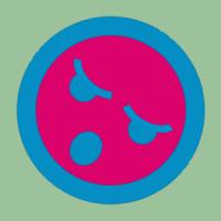 bbsheng