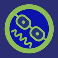 ferndchamp