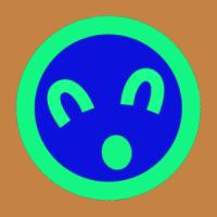 bhoose