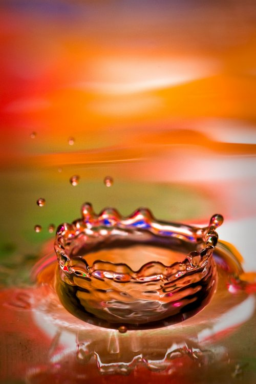 Splash Photography