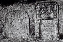 Staryi Sambir, Jewish cemetery