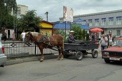 Mohyliv-Podilskyi - market