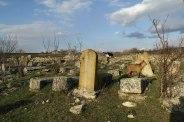 Prodănești - Jewish cemetery
