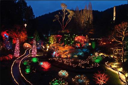 Christmas At Butchart Gardens Van Isle Marina